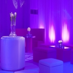 Celebrity Event Planner in Warwickshire 9